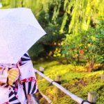 日傘のuvカットの寿命や晴雨兼用と雨傘の違いについて