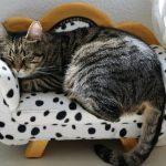 一人暮らしのソファベッドのおすすめはコンパクトで多目的なIKEAのコレ!